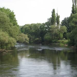 Muldeverlauf bei Jeßnitz (Anhalt)